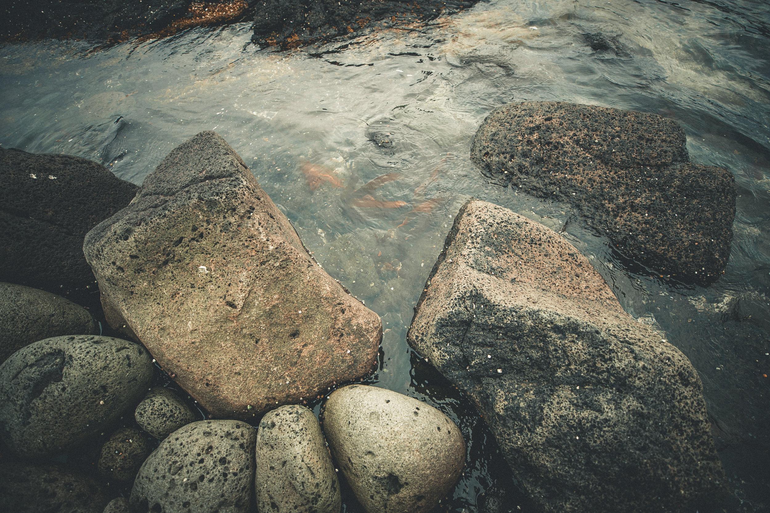 IcelandDay3-31.jpg