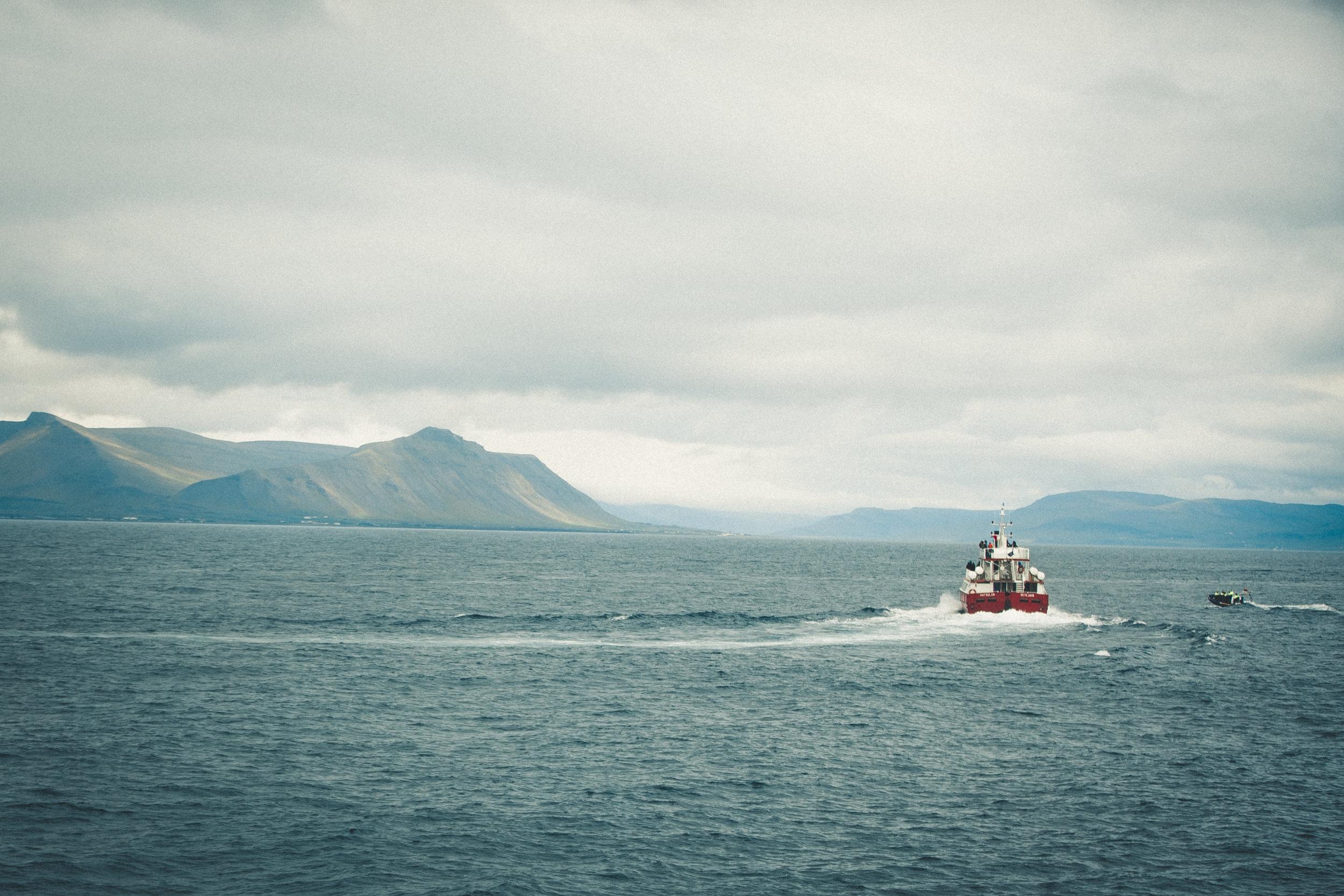 IcelandDay3-130.jpg