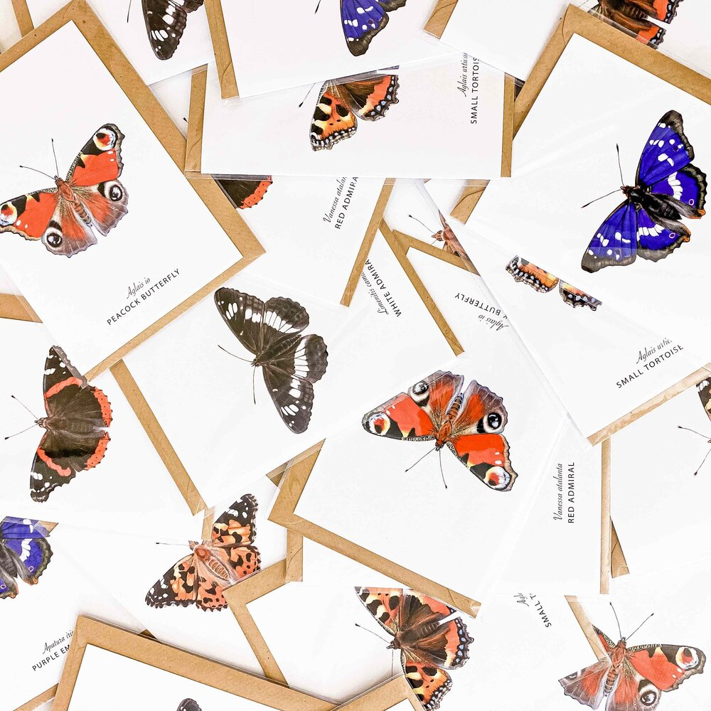 A6 Pack of 6 British Butterfly Greeting Cards