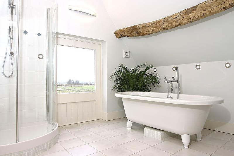 8040738-bathroom-800-medium.jpg