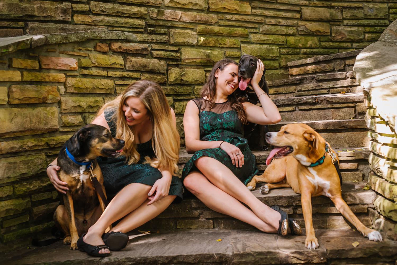 FairyTail+Pet+Care+++Ashlee+Hamon+Photography.jpg