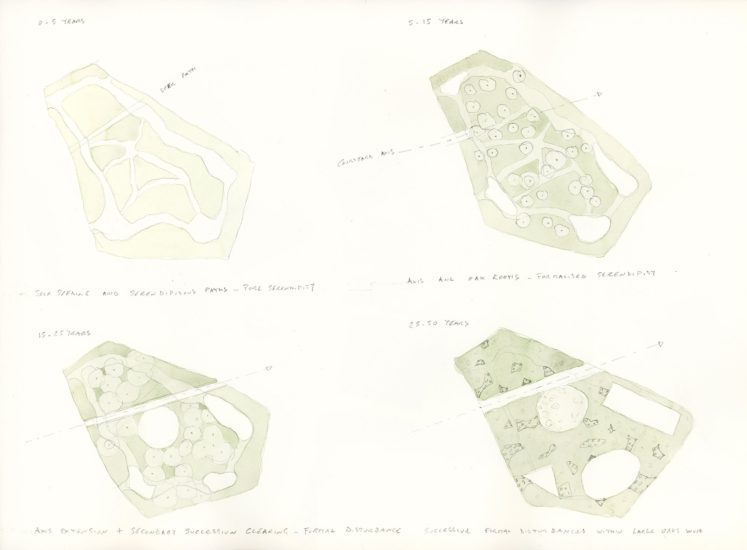 The successional plans of the Oak Rooms wood: top left are the first five years of improvised paths; top right is the current situation of Oak Rooms; bottom left, the next planned stage of a first circular clearing and cut axis; to its right is the envisioned next stage of added clearings which are then left to regenerate and disappear until another is created.