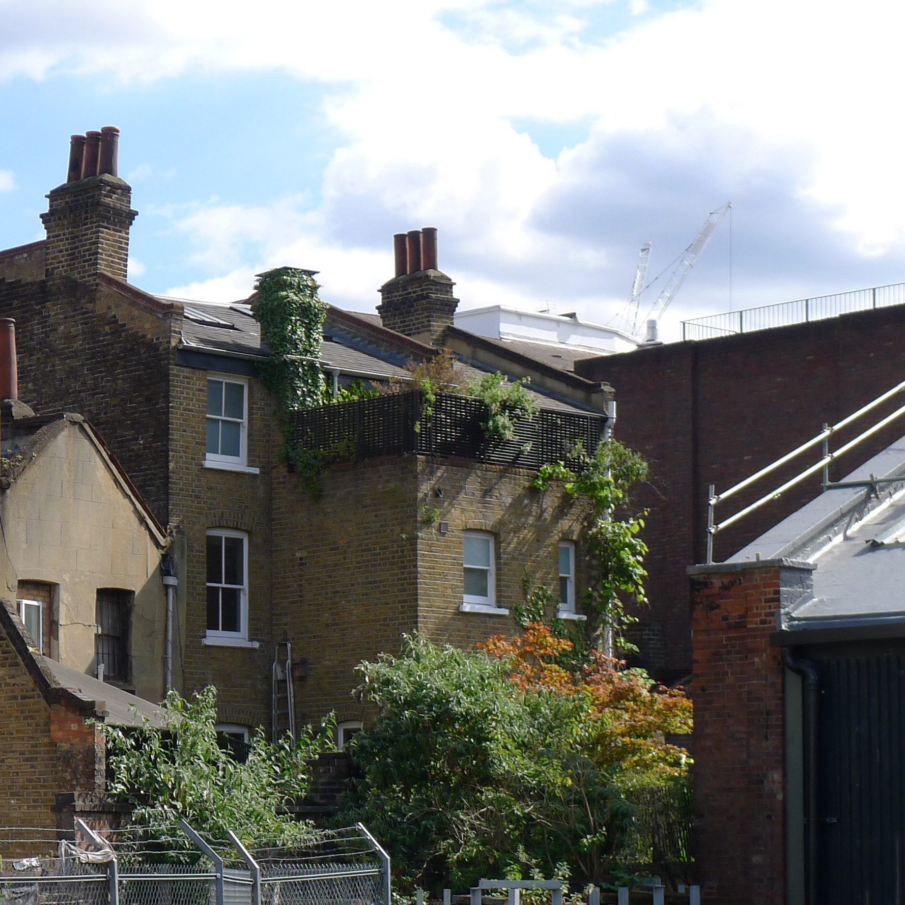 The roof gardens after 10 years