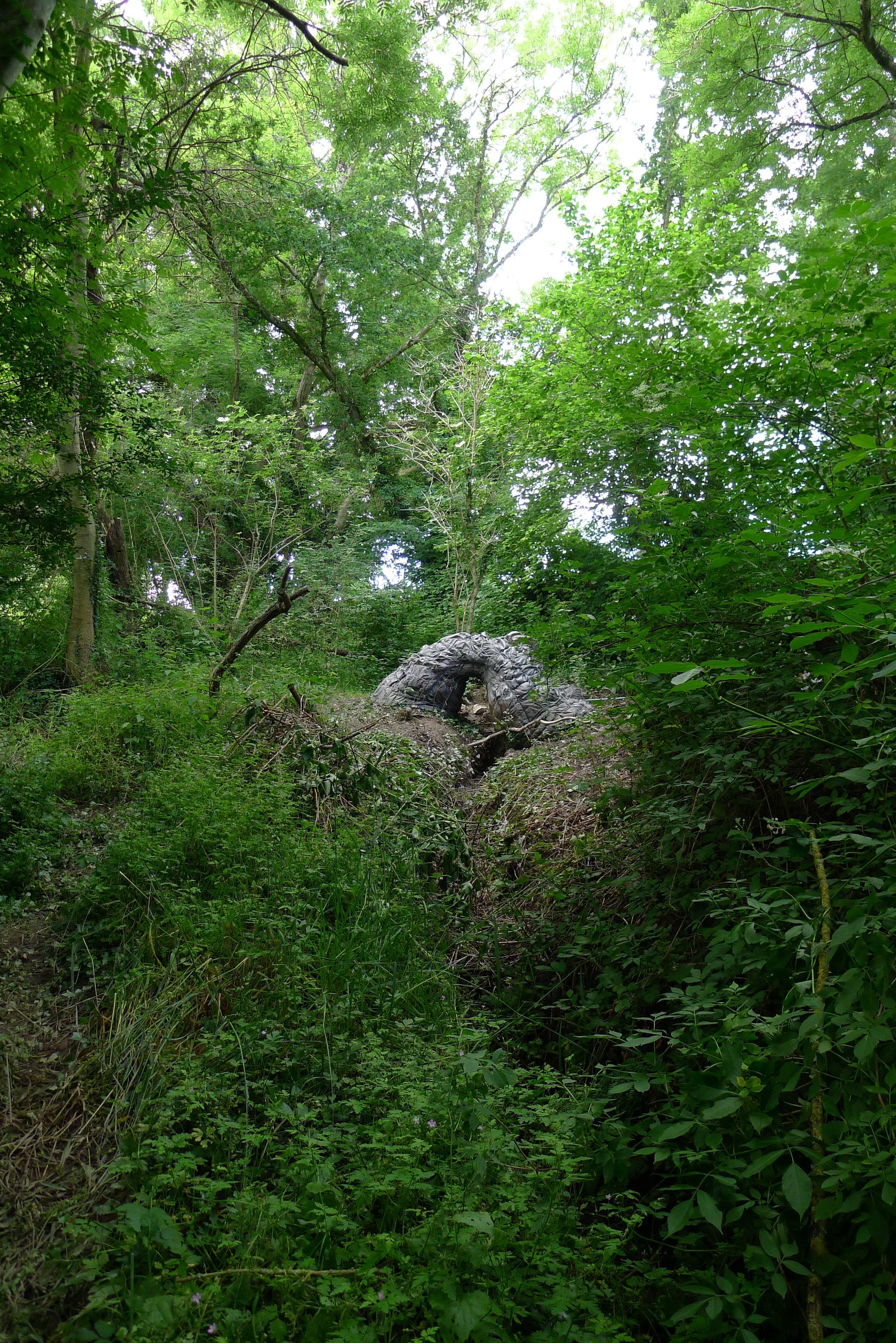 Roots Pavilion