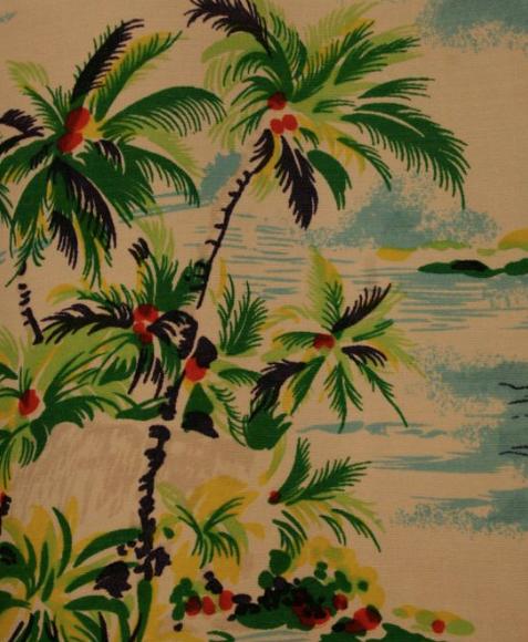aloha shirt 2.png