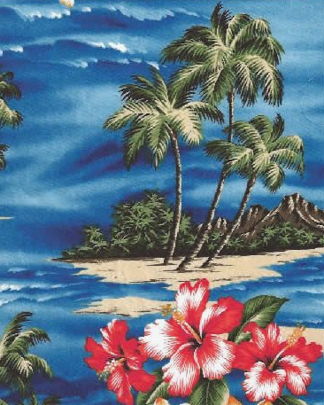 aloha shirt 3.png