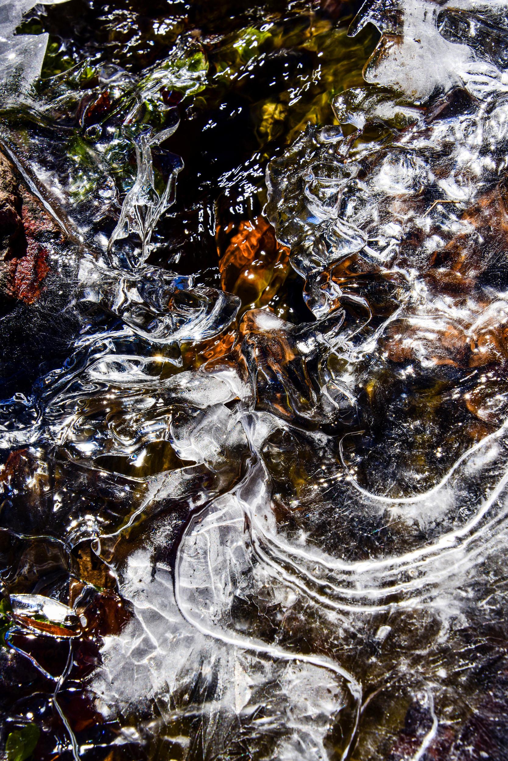 Creek Art web.jpg