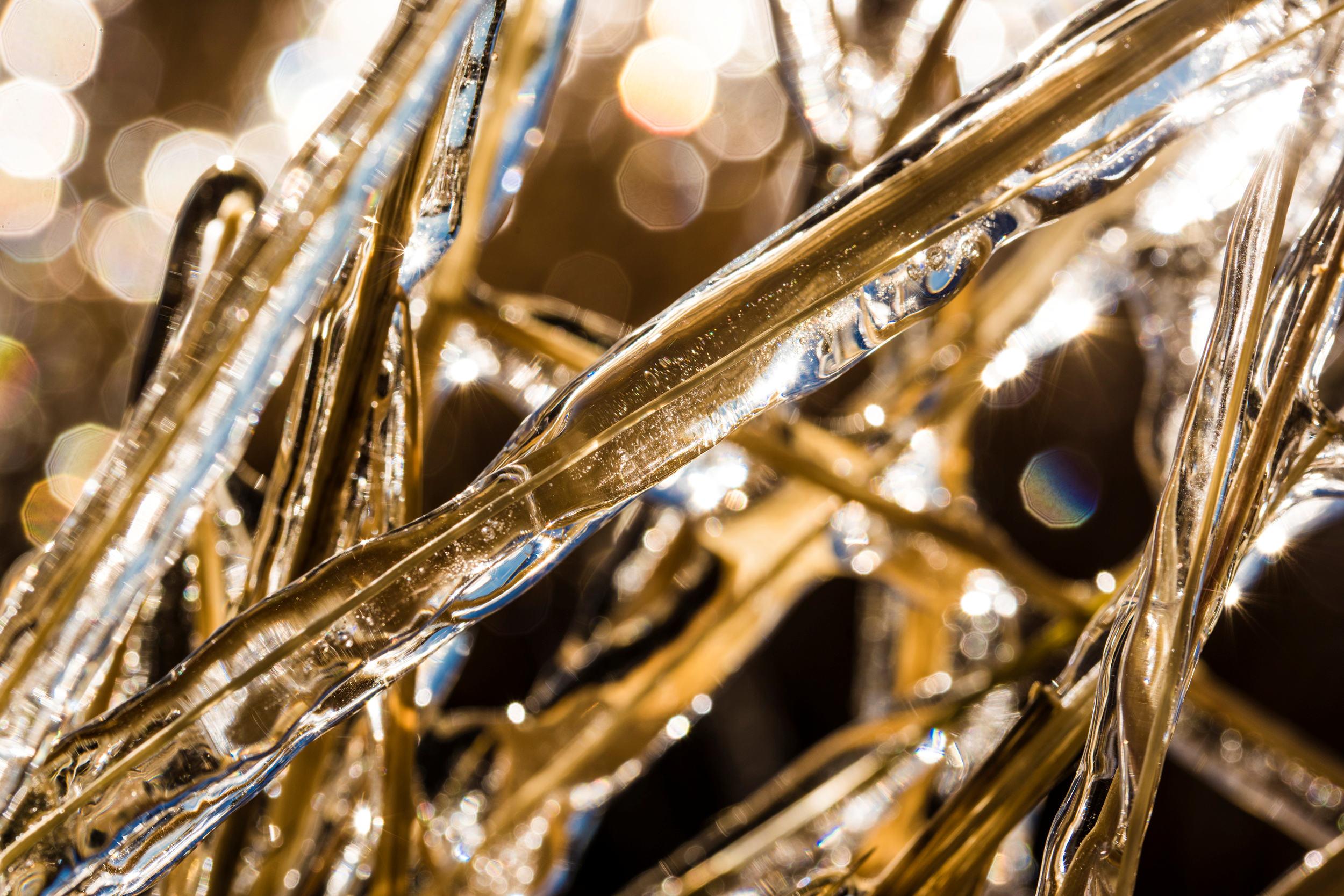 Gras with Ice 2 sm.jpg