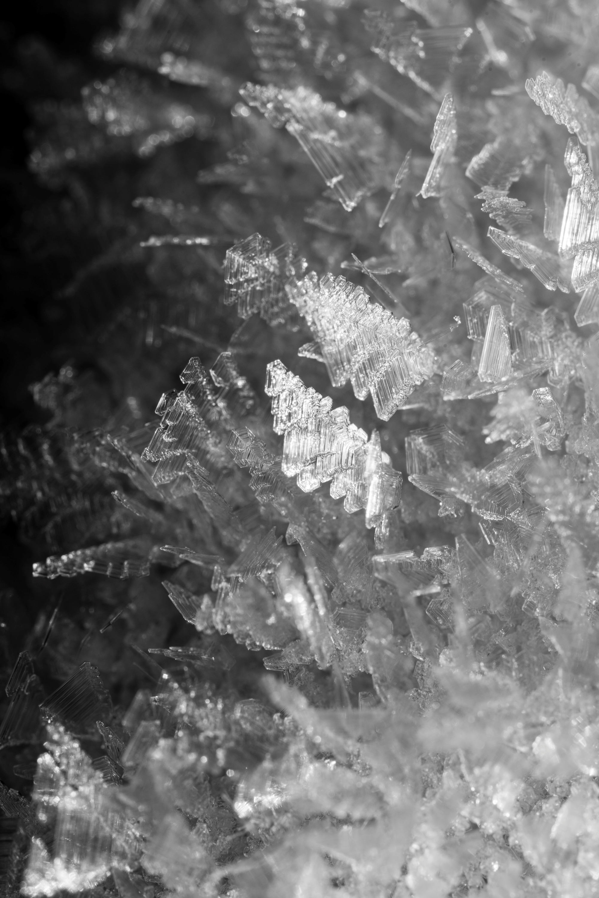 Ice Crystal Formations BW sm.jpg