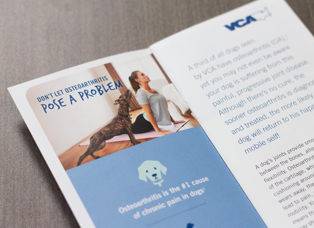 vca-oa-brochure-2