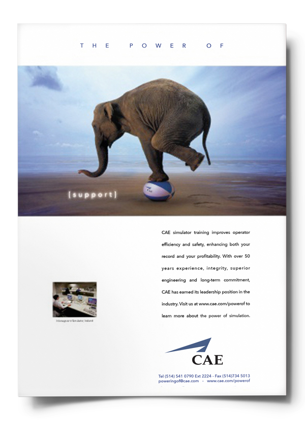 cae-support-poster