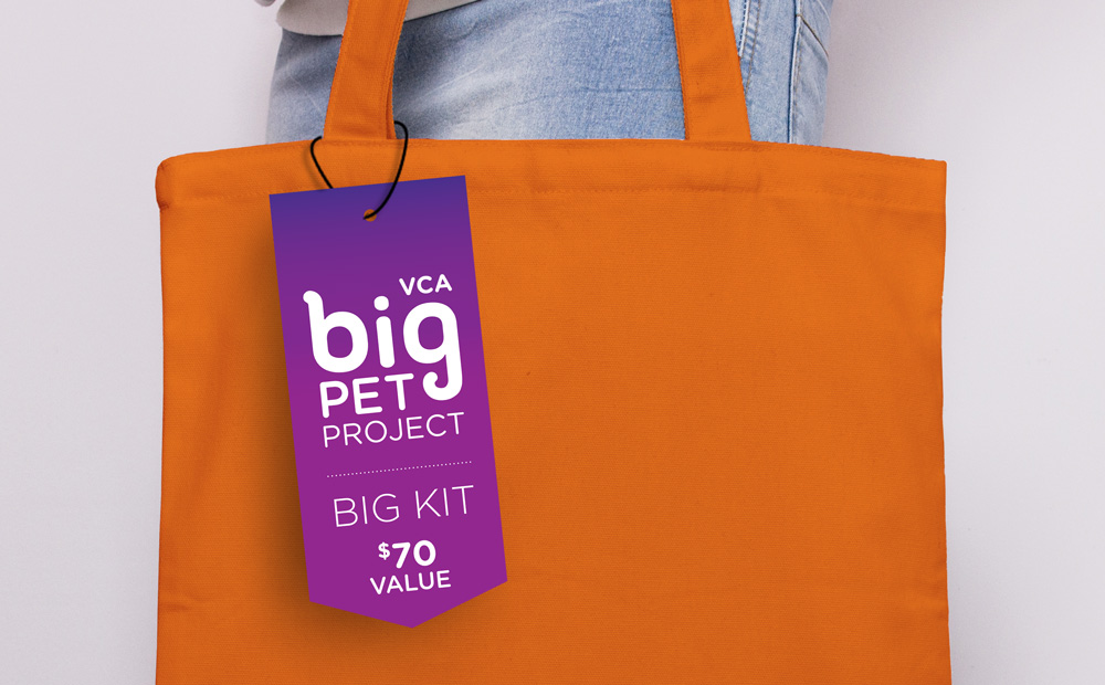 big-pet-project-hangtag