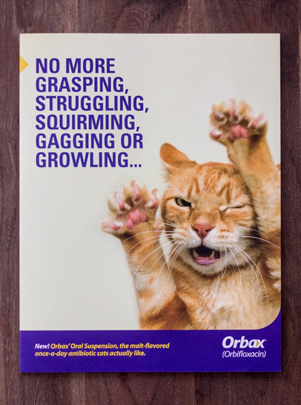 orbax-detailer-cover