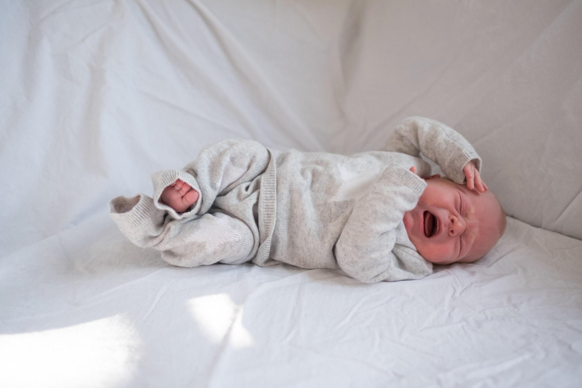 family-portrait-baby-photographer-081.jpg