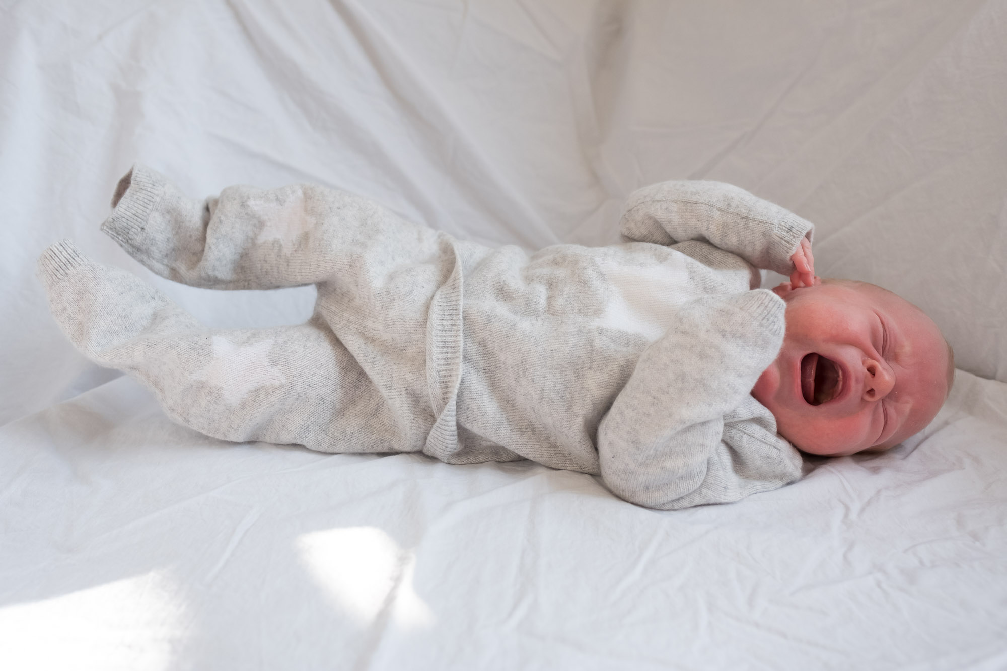 family-portrait-baby-photographer-084.jpg