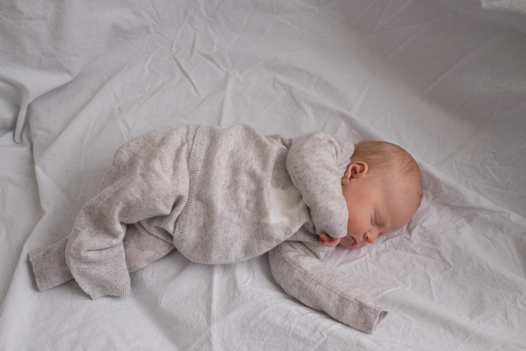 family-portrait-baby-photographer-149.jpg