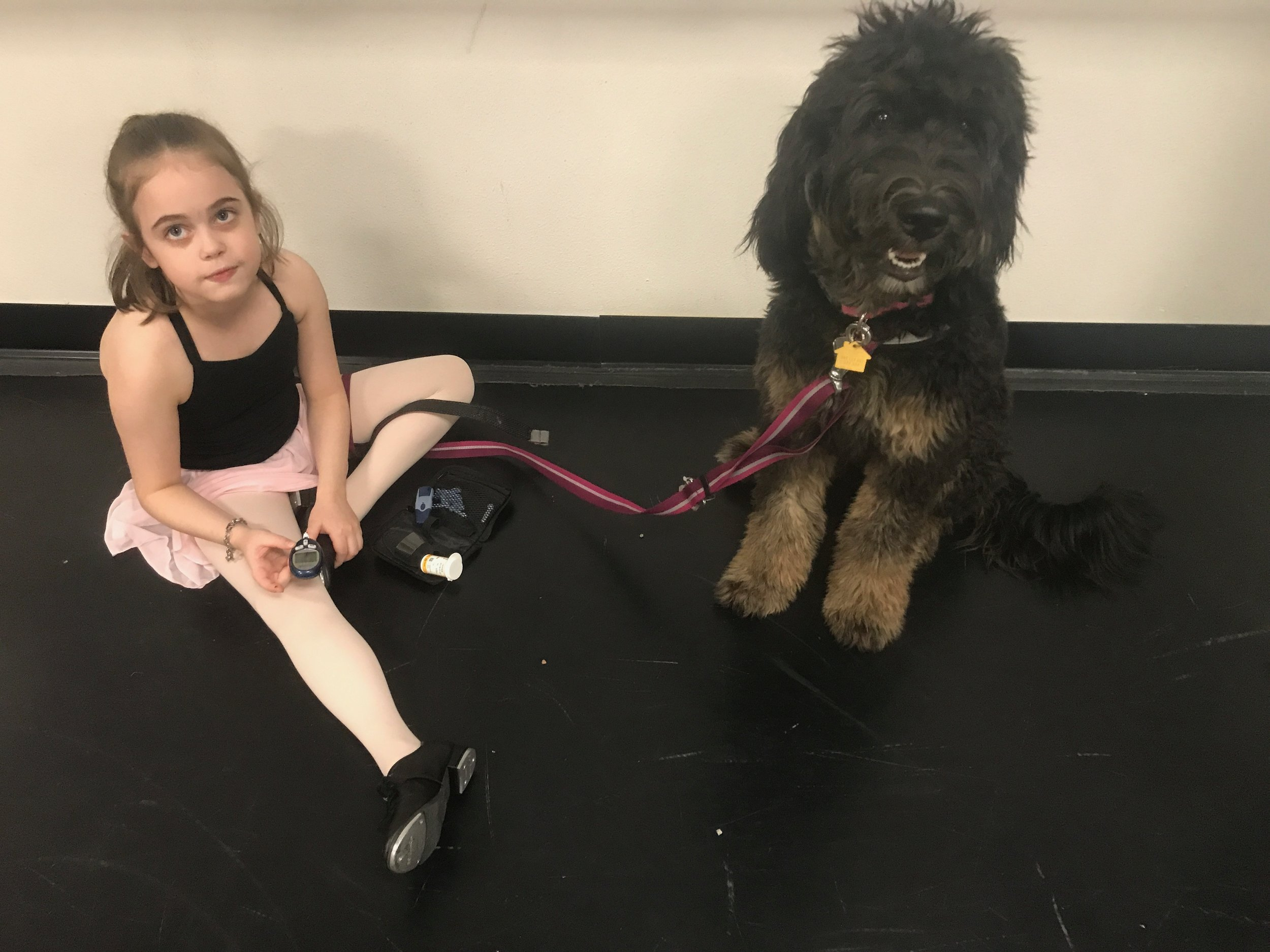 Mazie First Alert - Mazie had a live alert at Phoebe's dance class. Phoebe is next to her double checking to see if Mazie is right.