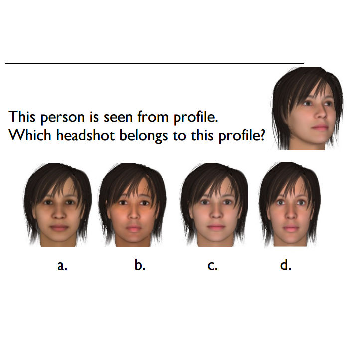 PoliceExam911 teaches you how to pass Facial Recognition Quizzes.