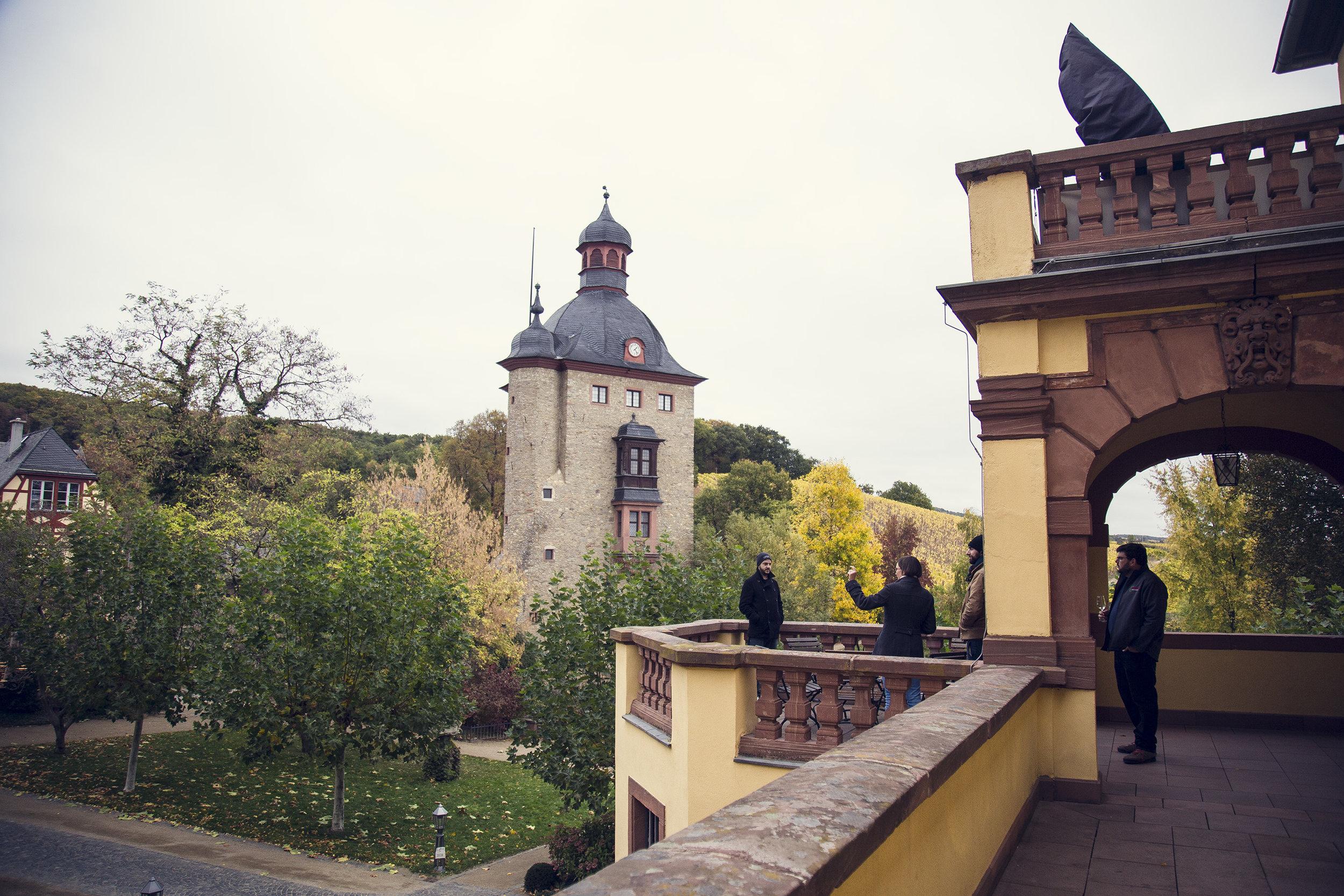 Vignoble Schloss Vollrads