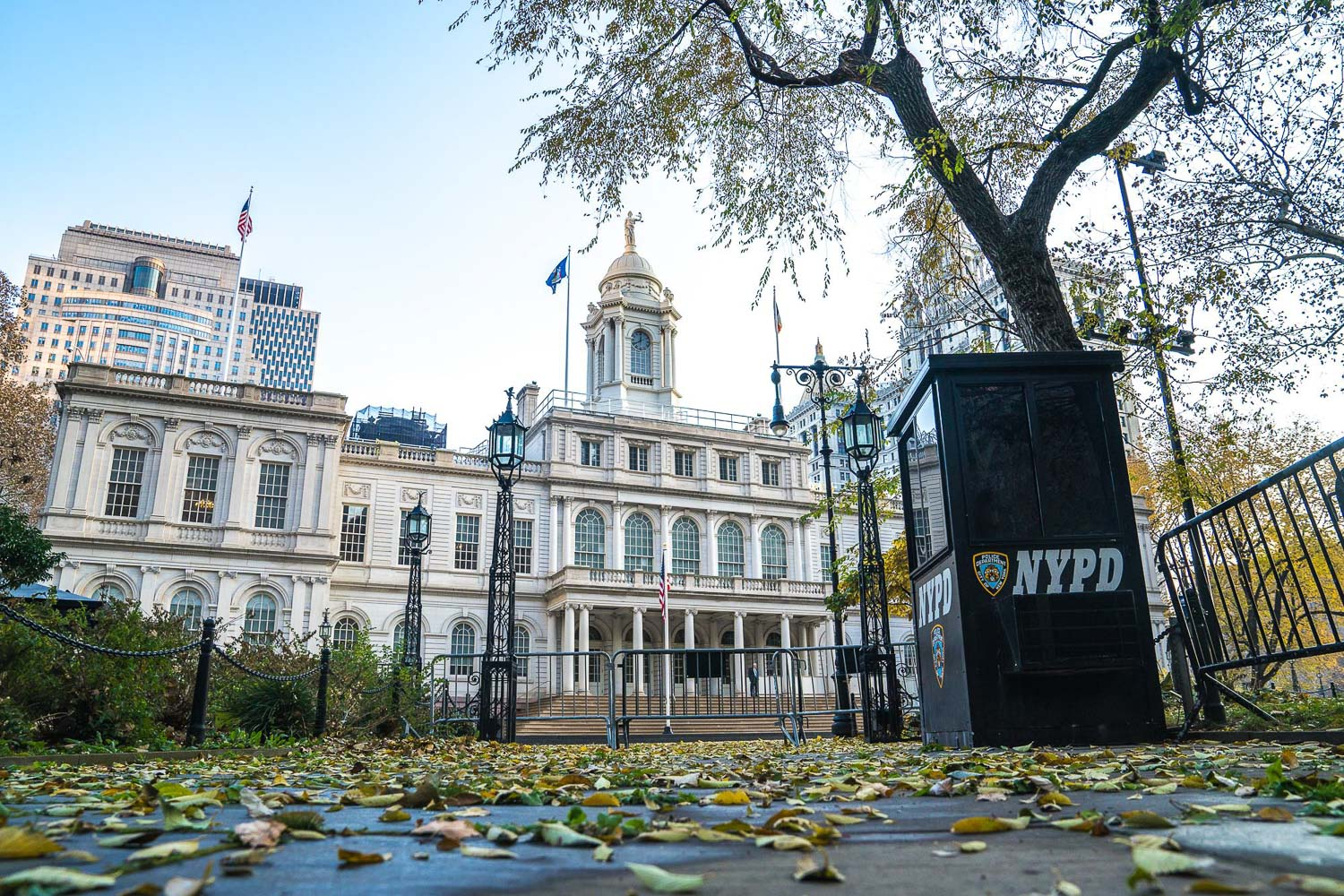 <strong>#4:</strong> New York City Hall/City Hall Park