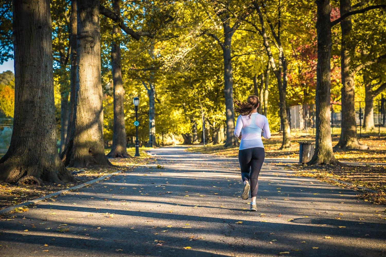 <strong>#1:</strong> Van Cortlandt Park