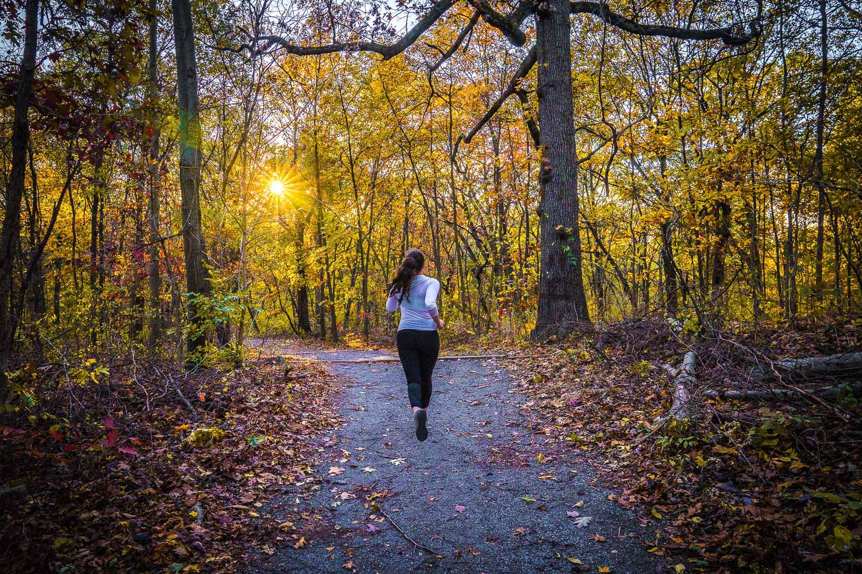 <strong>#6:</strong> Van Cortlandt Park Bridle Trail