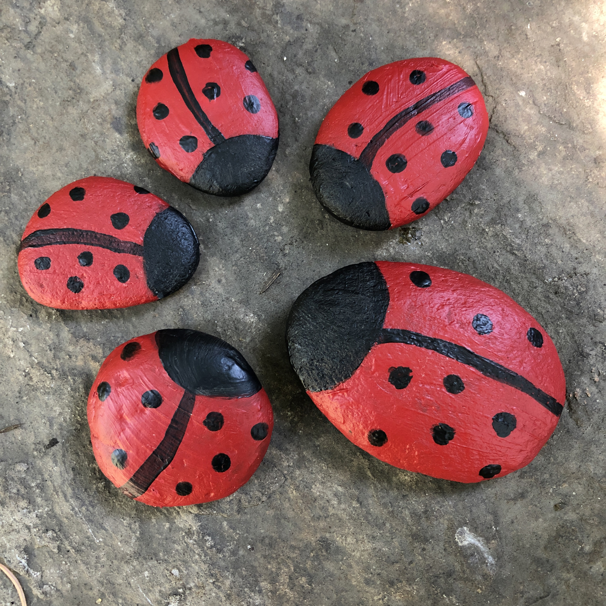 Painted ladybug rocks for blessing the new home of a family of five…