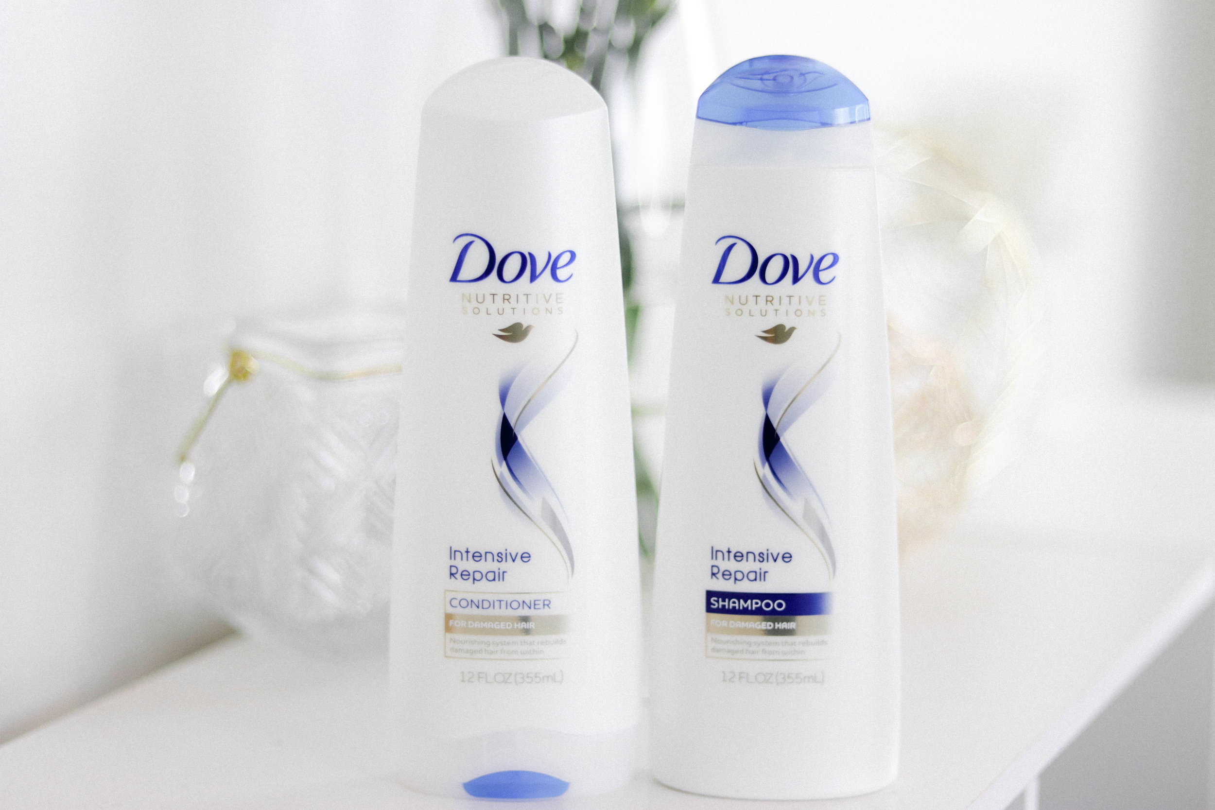 Dove2.jpg