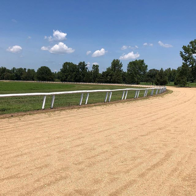 Sprucing yo our track by taking the irrigation pipe down and painting the rail white. @powhatanplantation #improvements #farmlife #3/4miletrack #farmtradition