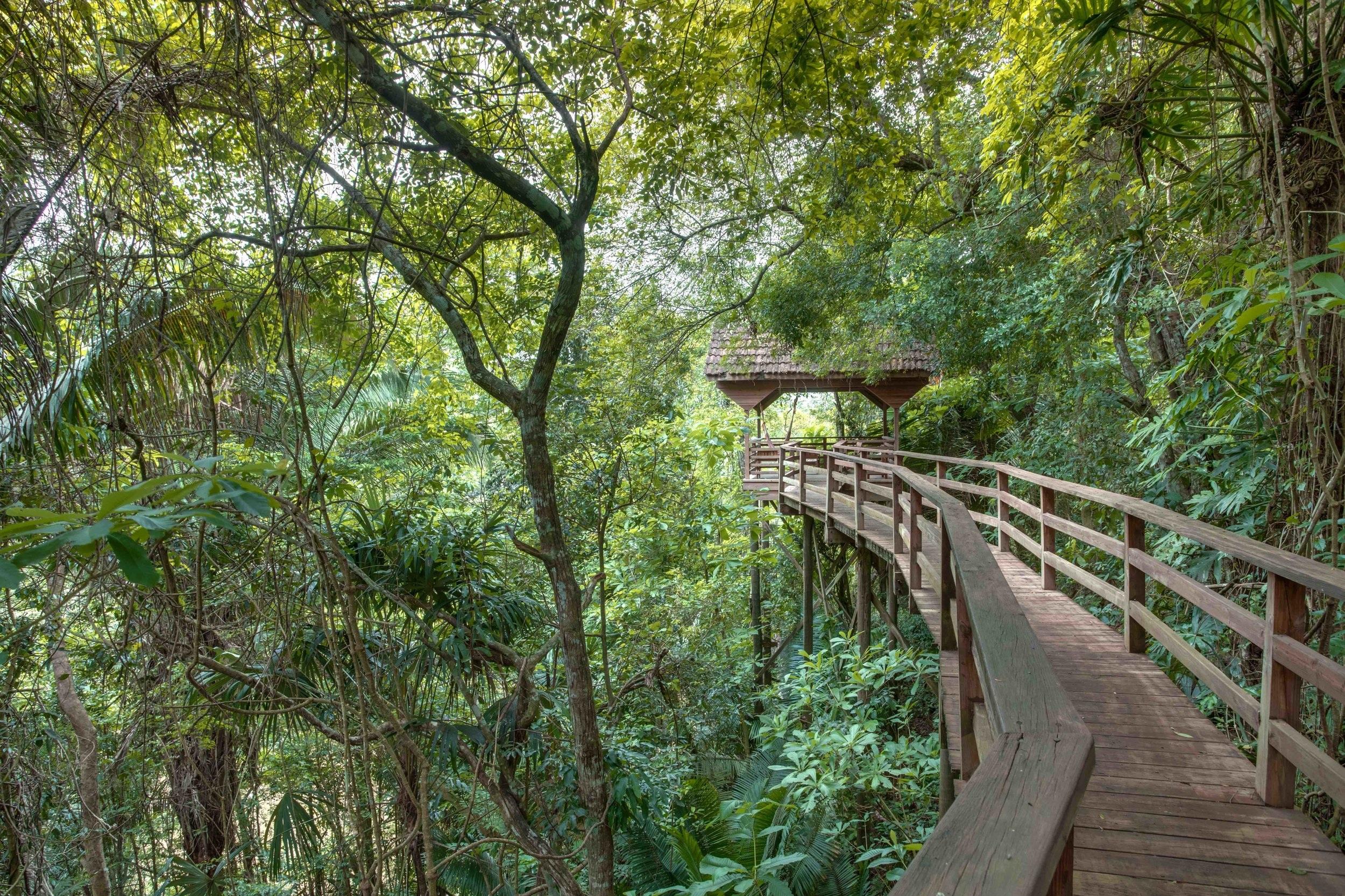 Beach & Jungle Combination Vacation -