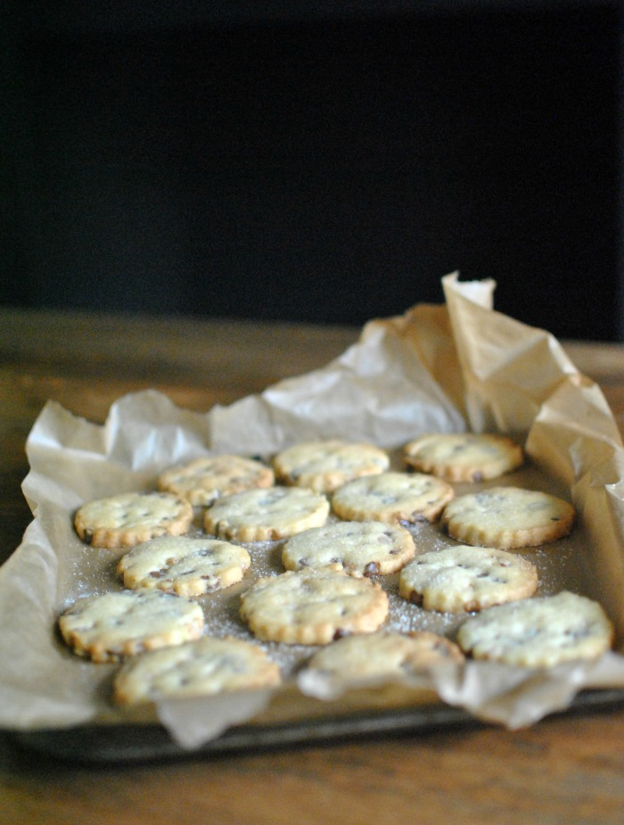 Chocolate Chip Shortbread Biscuits // Amy Elizabeth