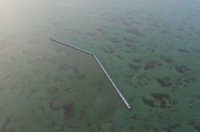Wave break construction being used as an innovative seagrass recruitment/mitigation approach for NCDOT's Bonner Bridge project. CSA continues to monitor the ongoing colonization of seagrass behind the structure as well as fauna colonizing the structure itself.