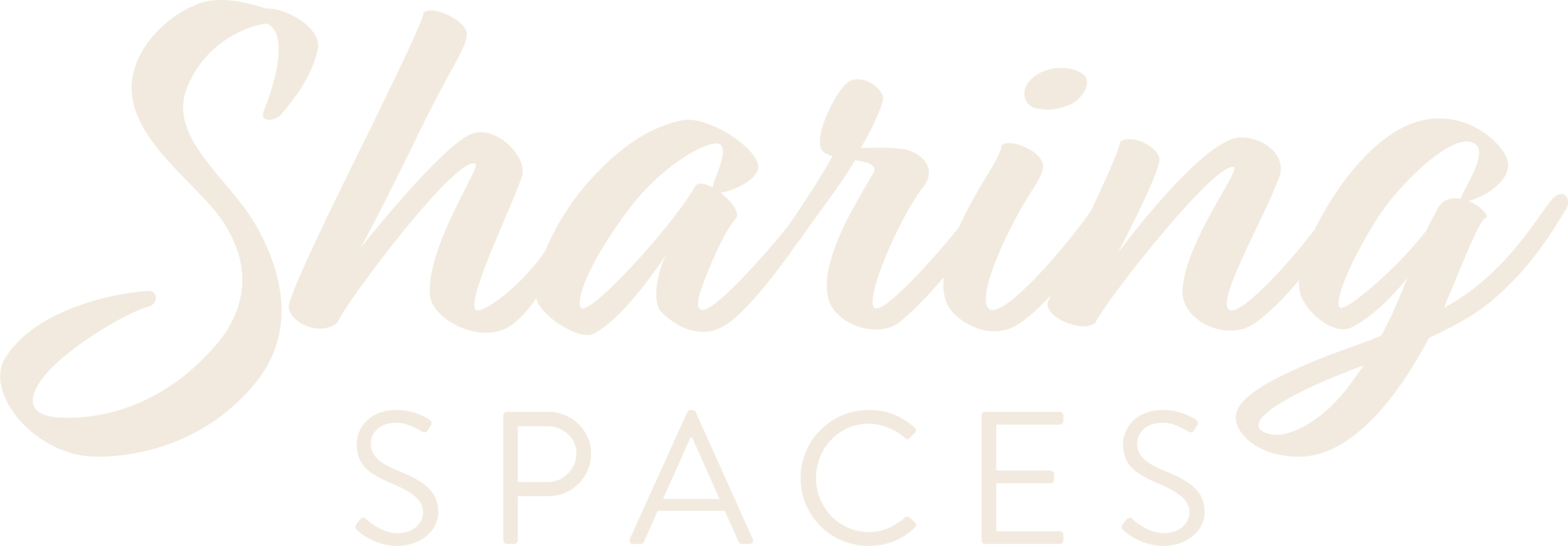 SS_Logo_Wordmark_OffWhite.png