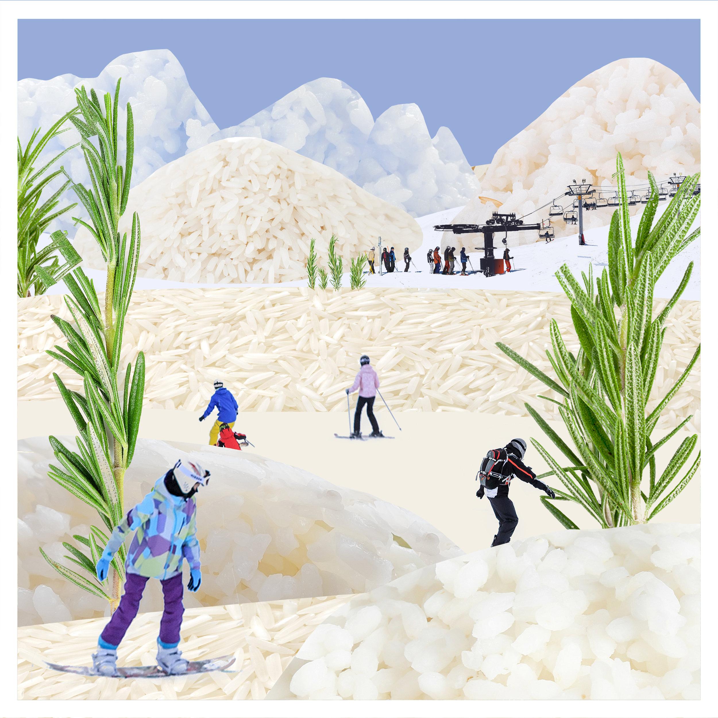 2_winter_rice.jpg
