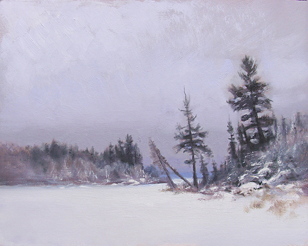 February on Bearskin Lake,   16 x 20 oil on canvasboard I started this as a studio demo during a winter workshop and finished it later when I wasn't droning on and on about who knows what.