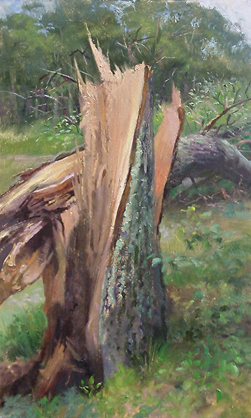 Fallen Tree , 12 x 20 oil on panel One July in northwestern Wisconsin, straight-line winds took down hundreds of trees. I can only imagine the heart-breaking  crack  this one made. Its twisted, exposed anatomy was beautiful. Selected for the 2011 Minnesota State Fair Fine Arts Exhibition.
