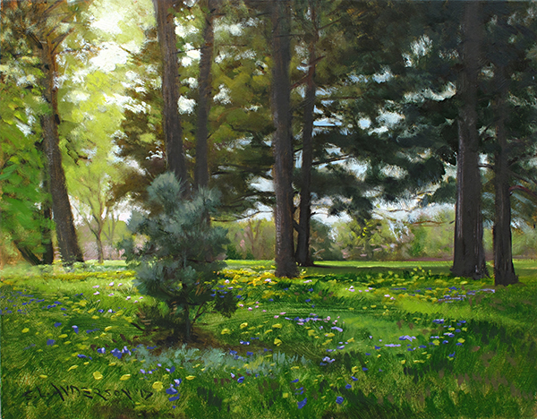 Sun-drenched Conifers , 16 x 20 oil on panel I found this little group of pines near Lake Hiawatha in Minneapolis. The spring flourish of yellow dandelions and purple scilla were fun complimentary colors, but mostly I was after that cool green in the baby pine.