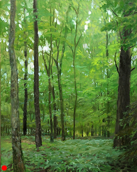 Forest Glow , 19 x 24 oil on canvas