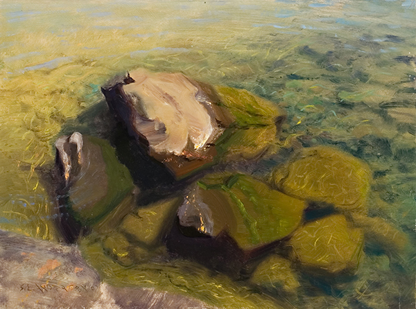 Lake Superior Rocks and Water,  12 x 16 oil on panel I painted this during the Grand Marais Art Colony's plein air event in late August, 2007. The colors of the moss-covered rocks and the transparent water were lovely.