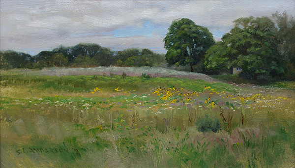 Wildflower Pasture , 12 x 20, oil on panel
