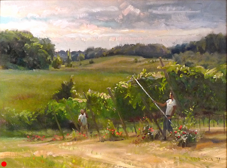 Netting the Vines, Parley Lake Vinyard  30 x 40 oil on canvas SOLD