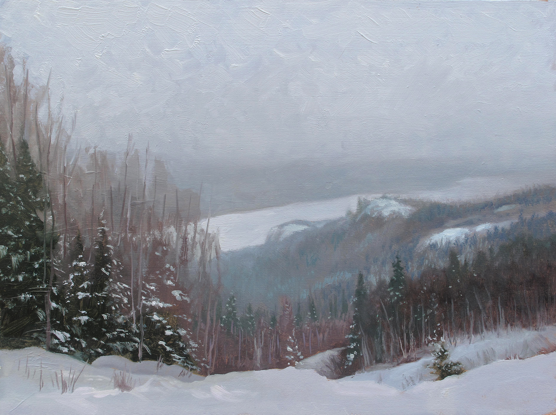 Snowy Vista, Loon Lake  12 x 16 oil on panel  This is a view of Loon Lake from the Gunflint Trail in northern Minnesota. This light, falling snow shrouded the lake and the distance. The northeastern part of the state offers more elevation changes than the rest of the state. It's nice to see space even through this thick, misty atmosphere.