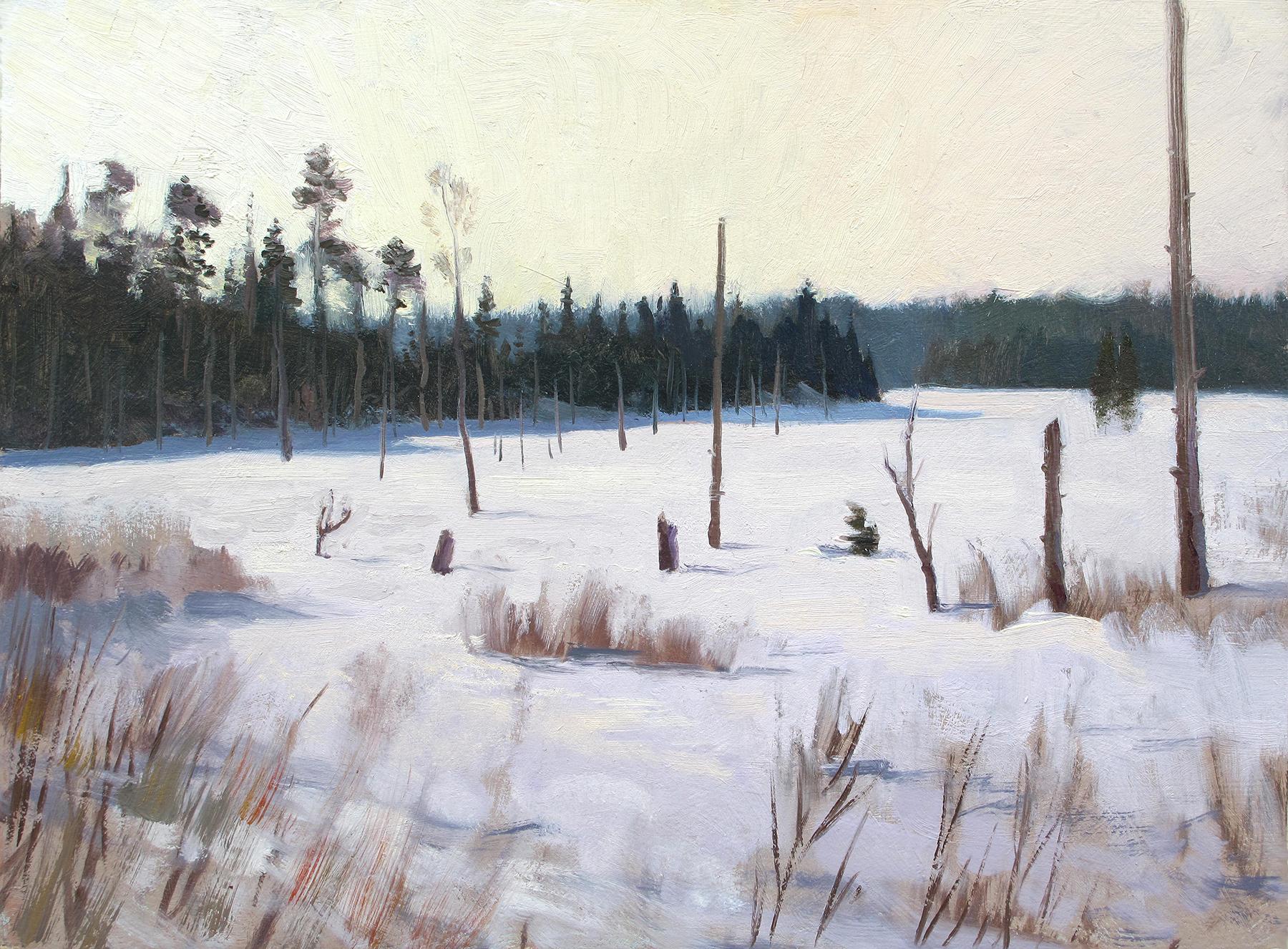 Frozen Marsh  12 x 16 oil on panel
