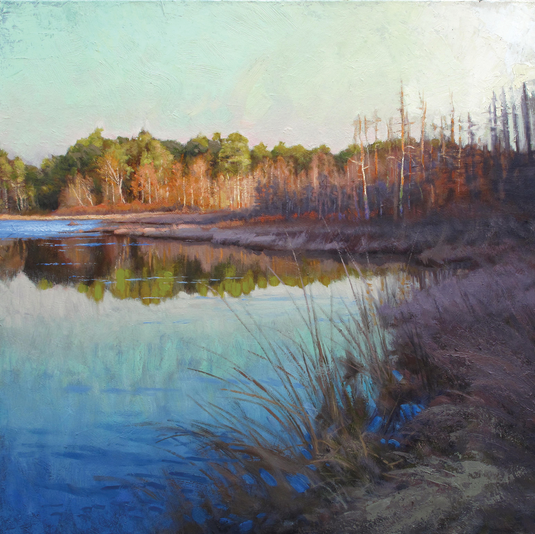Early Spring at the Lake  36 x 36 oil on gallery-wrapped canvas  Wetlands give us clean water.