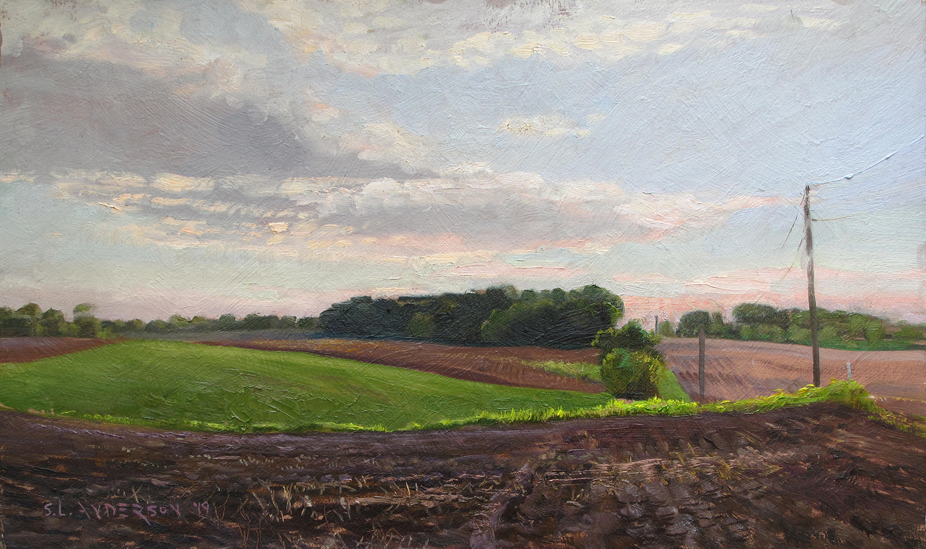 Rolling Fields  12 x 20 oil on panel Painted on location in San Francisco County, Minnesota.