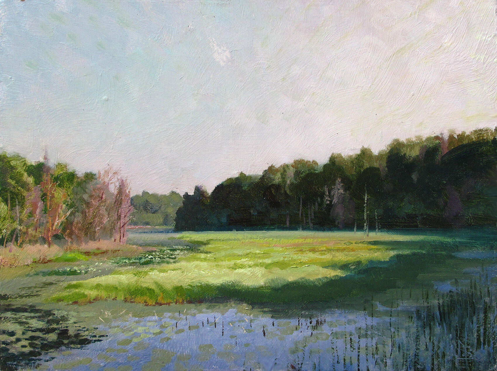 Sunny Wetlands    12 x 16 oil on panel  Painted on location somewhere in Burnett County, Wisconsin. Like many plein air painting days, I just start driving and looking around for something to jazz me. This day I walked out onto a new ATV trail bridge and saw this shadow starting to inch across the marshy grasses. Nice shapes.