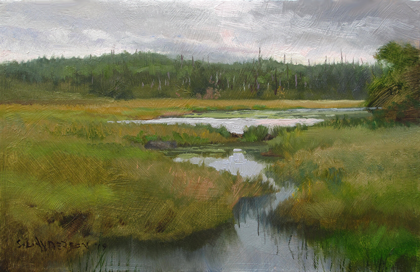 Seagull Creek    7 x 11 oil on panel  Painted on location at the end of the Gunflint Trail, up near the Canadian border.