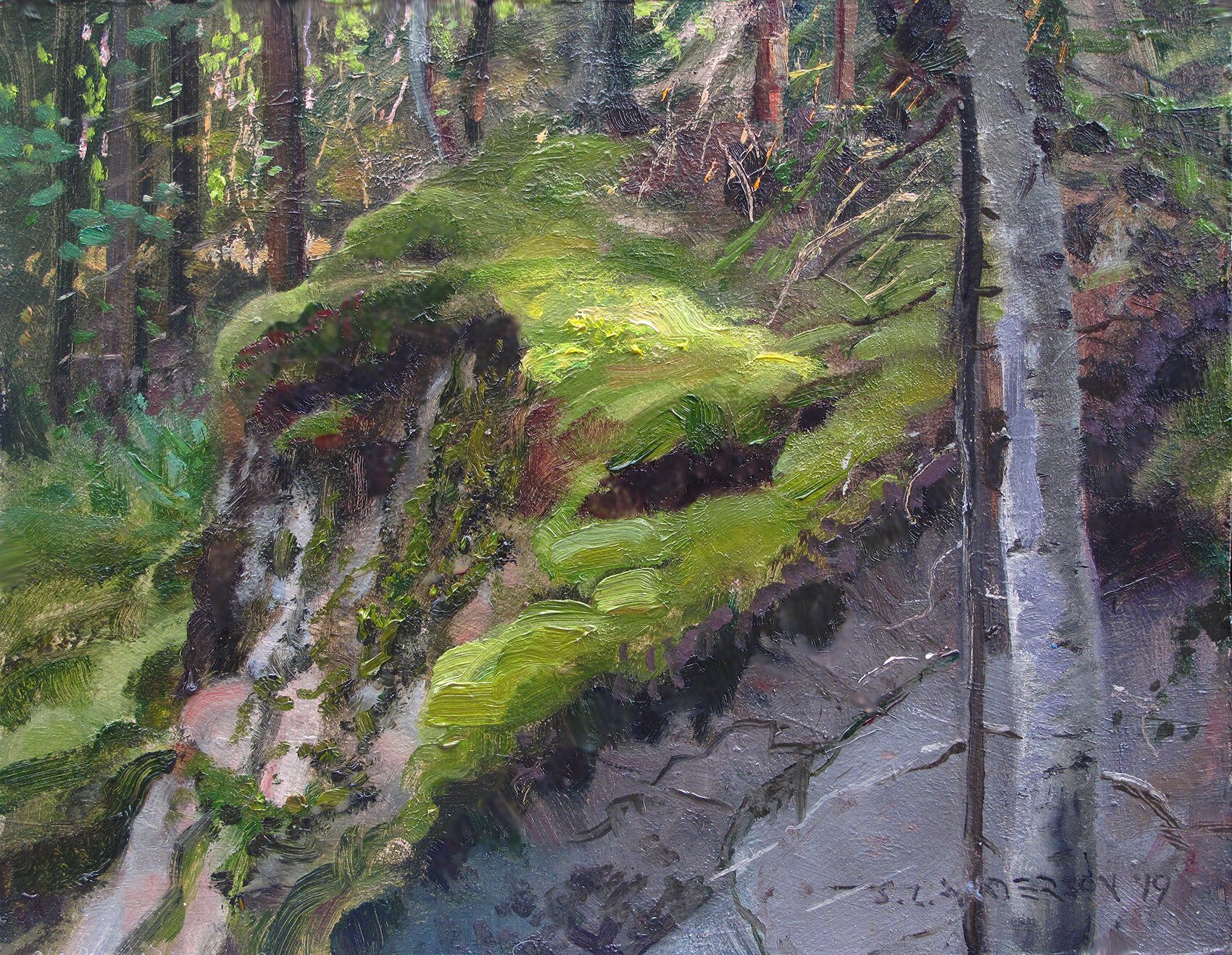 A Patch of Light    8 x 10 oil on panel  Painted on location at the end of the Gunflint Trail, up near the Canadian border. Love the color of moss.