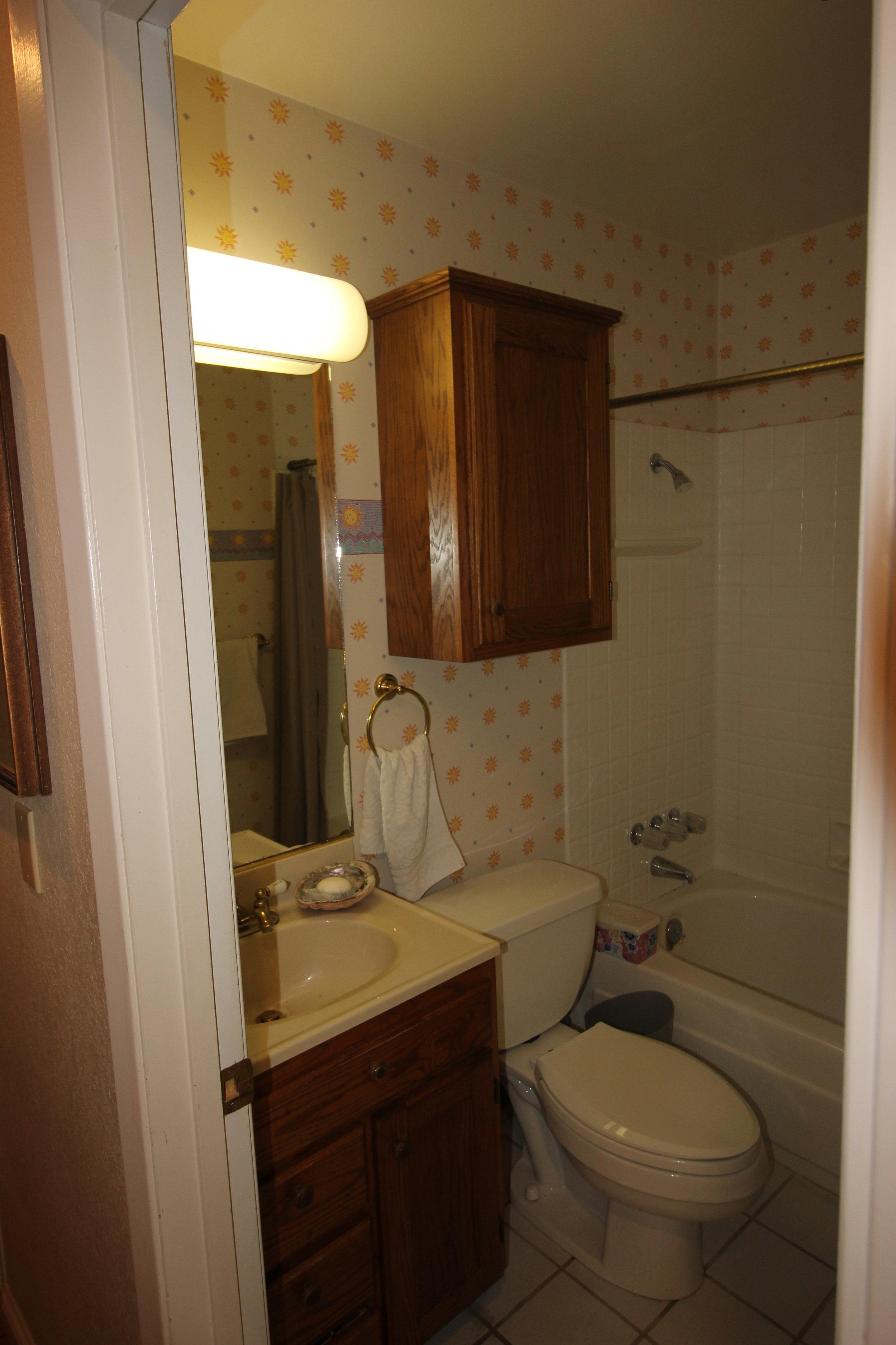 project guru bathroom remodel guest bath before 2.JPG