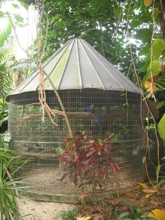 cage10_op_537x716.jpg